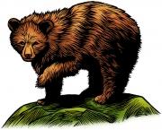 BearPu