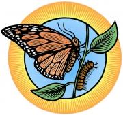 ButterflyCaterpillarPu