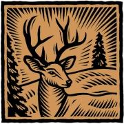 DeerHeadPu