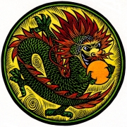 DragonPu