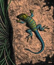 LizardPu
