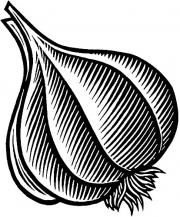 GarlicBulb