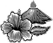 HibiscusVolcano