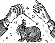 MagiciansRabbit