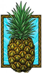 PineapplePu